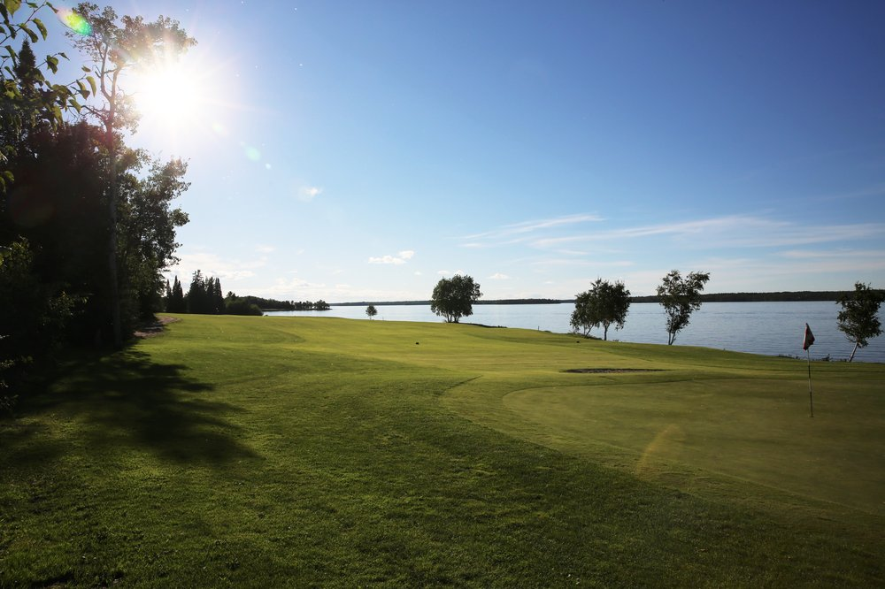green grass field surrounded by green trees under blue sky and white clouds during daytime
